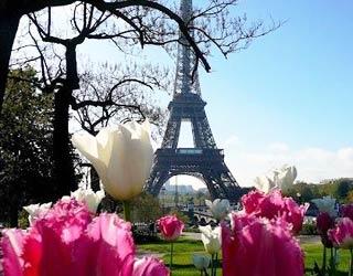 Meilleur Site de Paris